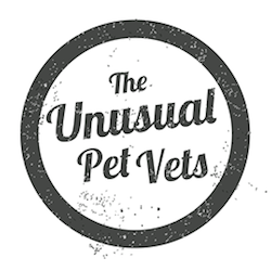 The Unusual Pet Vets