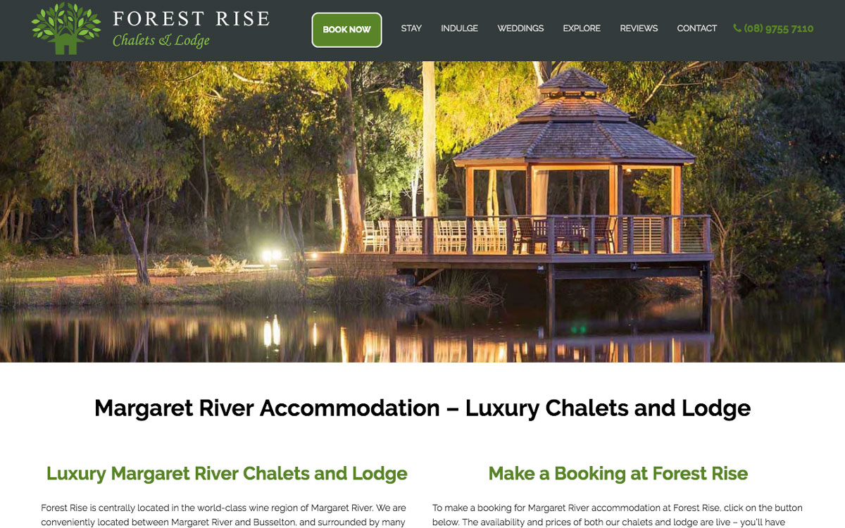 Forest Rise SEO Case Study